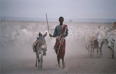 Addis's photo