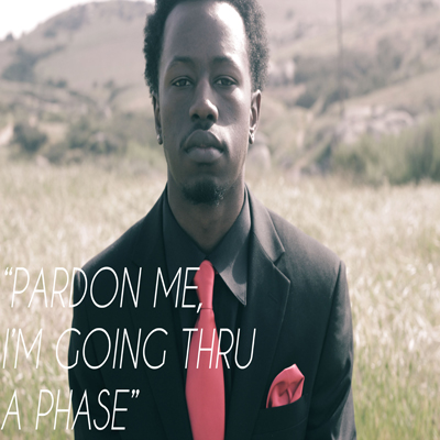 Steve Liriks - Pardon Me, I'm Going Thru a Phase Cover