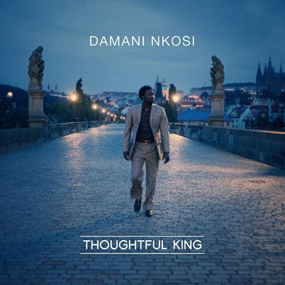 Damani Nkosi - Thoughtful King Album Cover