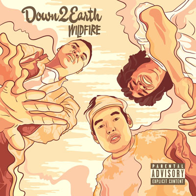 Down 2 Earth - Wildfire Album Cover