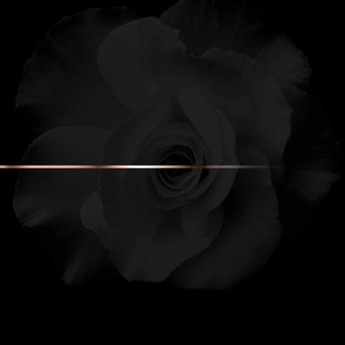 K. Roosevelt - RoseGold EP Cover