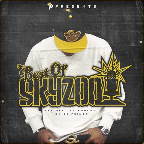 Skyzoo - The Best of Skyzoo Cover