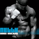 Nelly - Brass Knuckles Cover