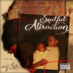 Jay Luse - The Soulful Attraction Cover