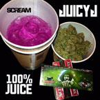 09095-juicy-j-100-juice