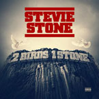 Stevie Stone - 2 Birds 1 Stone Artwork