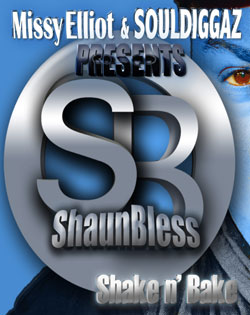 shaun-bless-ft.-missy-elliot-shake-and-bake