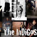 The Indigos