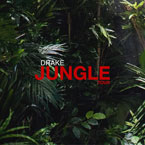 2015-04-13-drake-future-jungle-tour