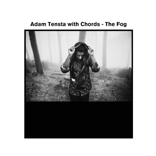 The Fog Cover