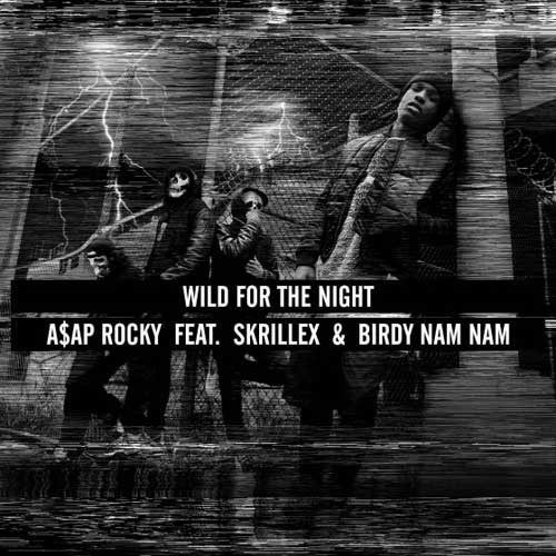 Wild for the Night Cover