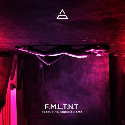 F.M.L.T.N.T Cover
