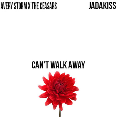 avery-storm-cant-walk-away