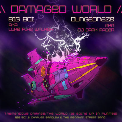 Damaged World Cover