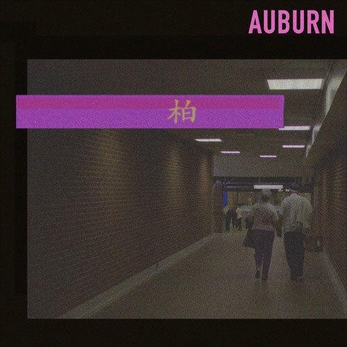 01256-brahny-auburn