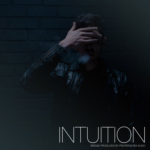 bridge-intuition