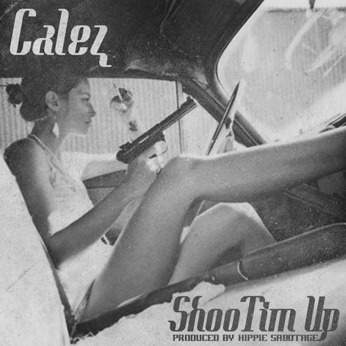 ShooTim Up Cover