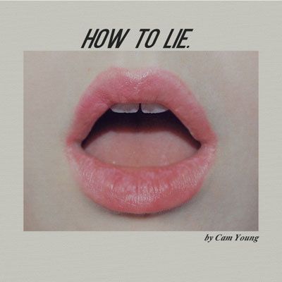 How To Lie Cover