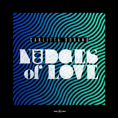 100 Nudges of Love Cover