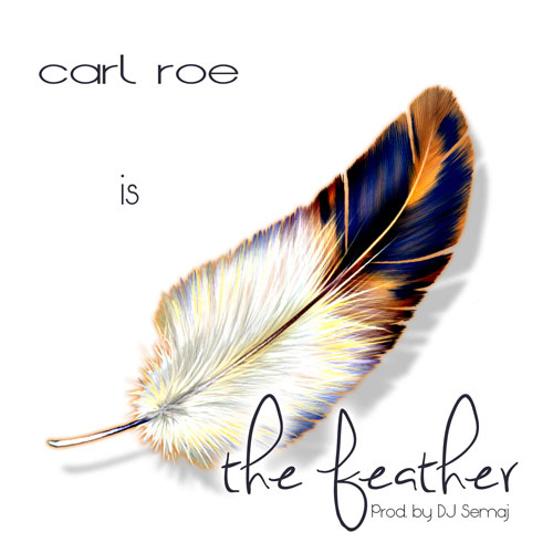 The Feather Cover