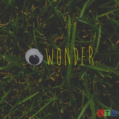 09155-case-arnold-i-wonder