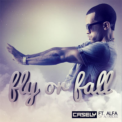 Fly or Fall Cover