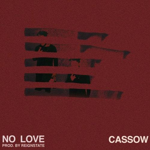 05306-cassow-no-love