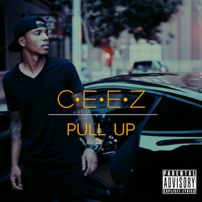 10085-ceez-pull-up