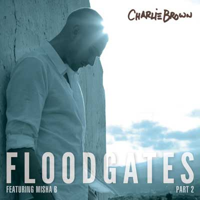 Floodgates Pt. 2 Cover