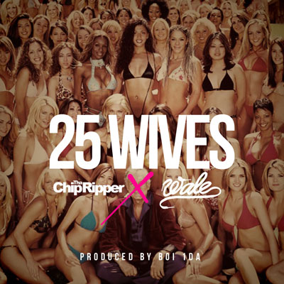 25 Wives Cover