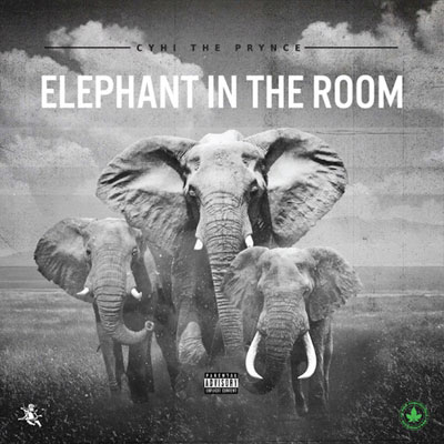 08055-cyhi-the-prynce-elephant-in-the-room