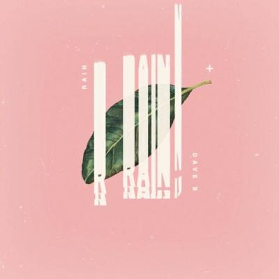 2015-04-07-dave-b-rain