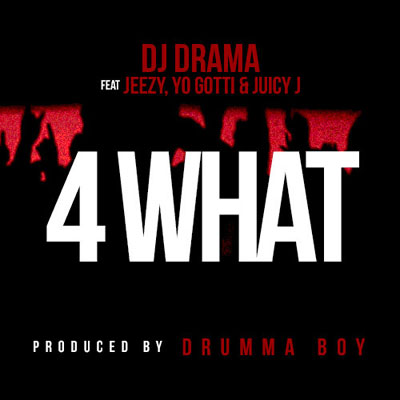 4 What Cover