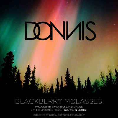 Blackberry Molasses Cover