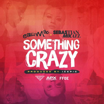 Something Crazy Cover