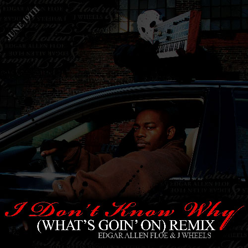 I Don't Know Why (What's Goin' On Remix) Promo Photo