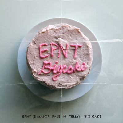 Big Cake Cover