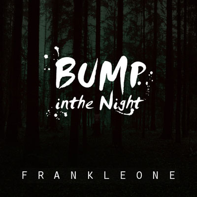BUMP in the NIGHT Cover