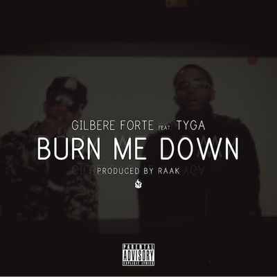 Burn Me Down Cover