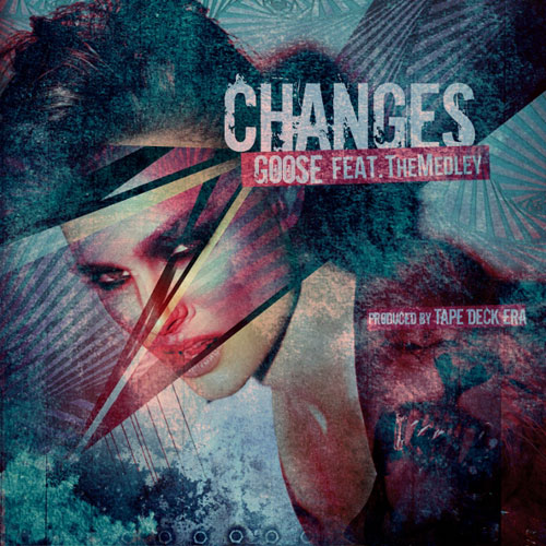 goose-changes