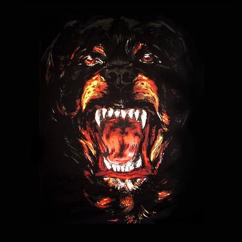 01116-iamsu-dogs