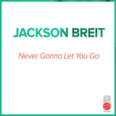 Never Gonna Let You Go Cover