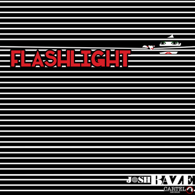 Flashlight Cover