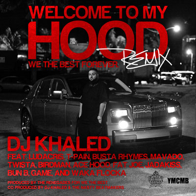 Welcome to My Hood (Remix) Cover