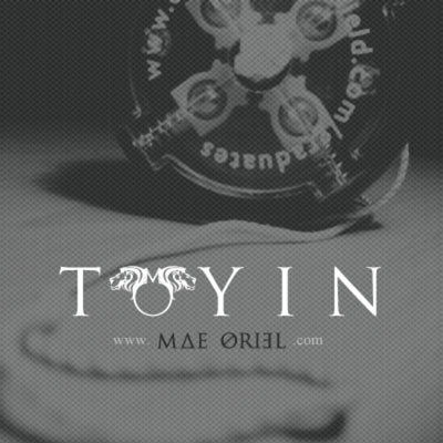 Toyin' Cover