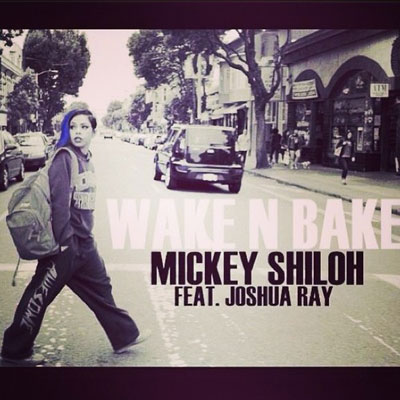 Wake N Bake Cover