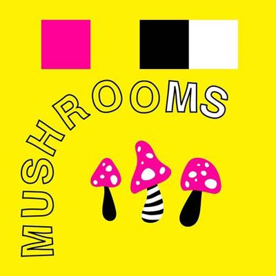 mod-sun-mushrooms