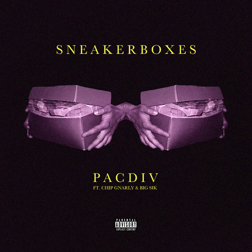 pac-div-sneakerboxes
