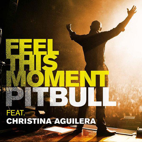 Feel This Moment Cover