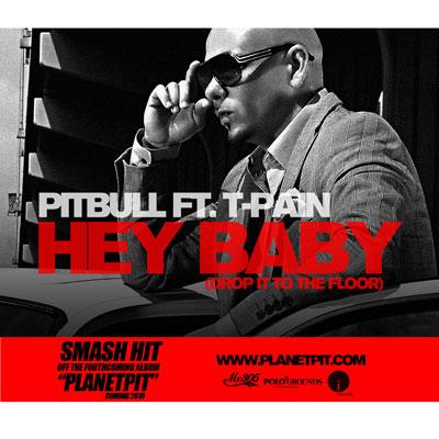 pitbull-hey-baby